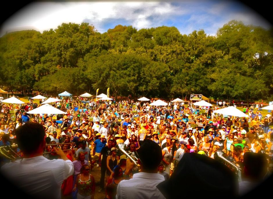 ca beer festival 2